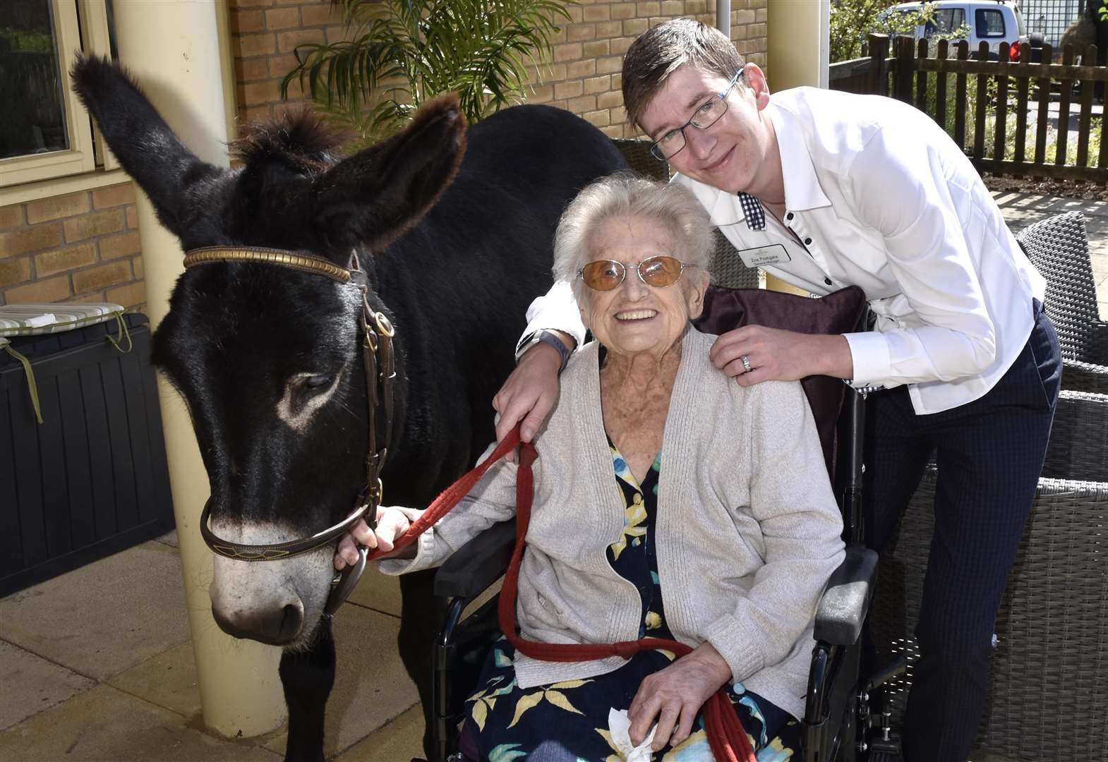 Donkeys visit fun day at Chater Lodge Care Home in Ketton