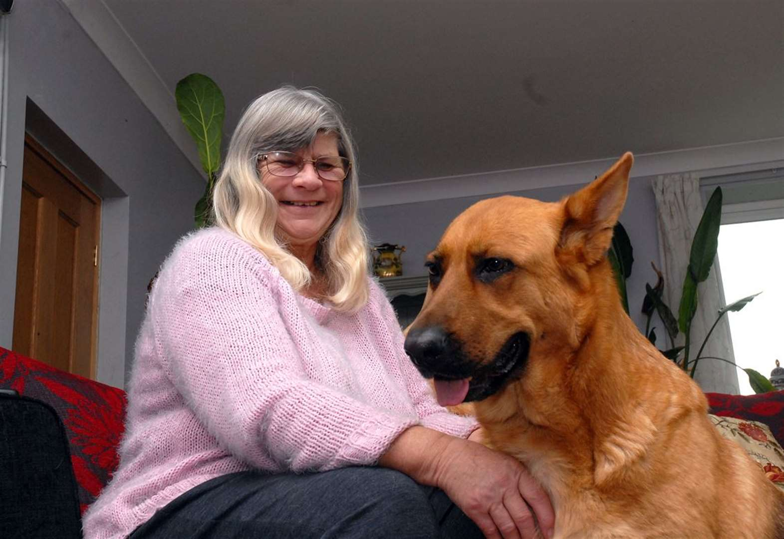 Dog saves owner from slipping into coma
