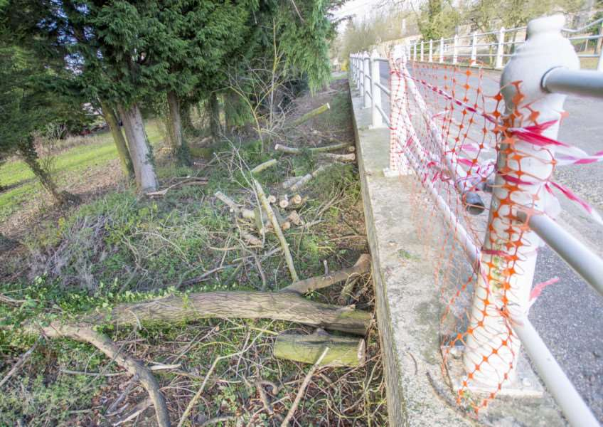 Railings which were damaged by a fallen tree on the bridge over the River Gwash. Submitted.