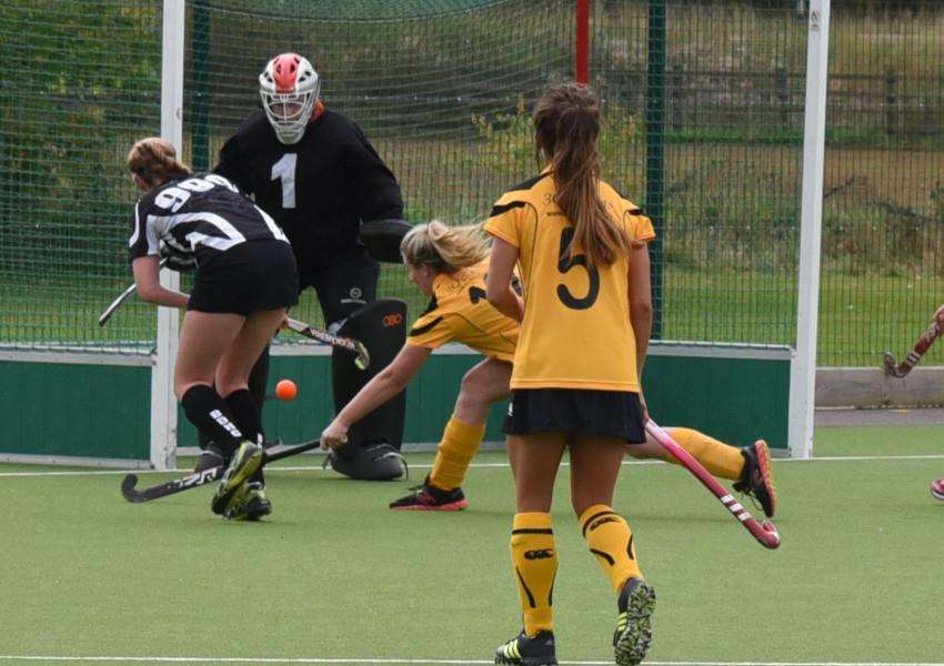 Bourne Deeping Dragons Hockey Club in action. EMN-151014-150217001