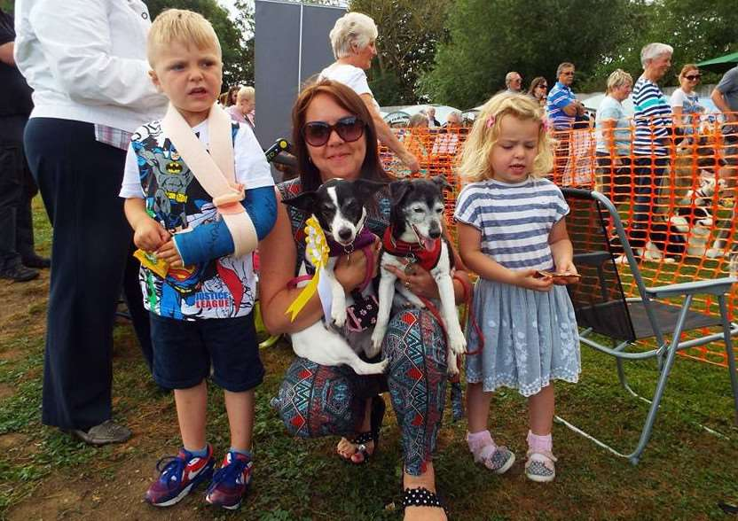 Three Counties Dog Rescue Dog Show 2016 Gq8sCJAkvf3XCuuwjFEr