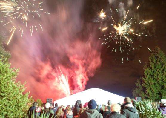Fireworks at Thorpe Hall Hospice's annual Lights of Love event. Photo courtesy of Dan Waters. EMN-141216-110510001