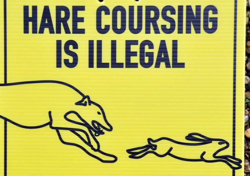 Signs warning off hare coursers