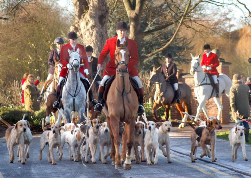Hounds and riders are led away from the park on the way to Saxby Road during Monday's New Year hunt meet in Melton EMN-170301-120221001
