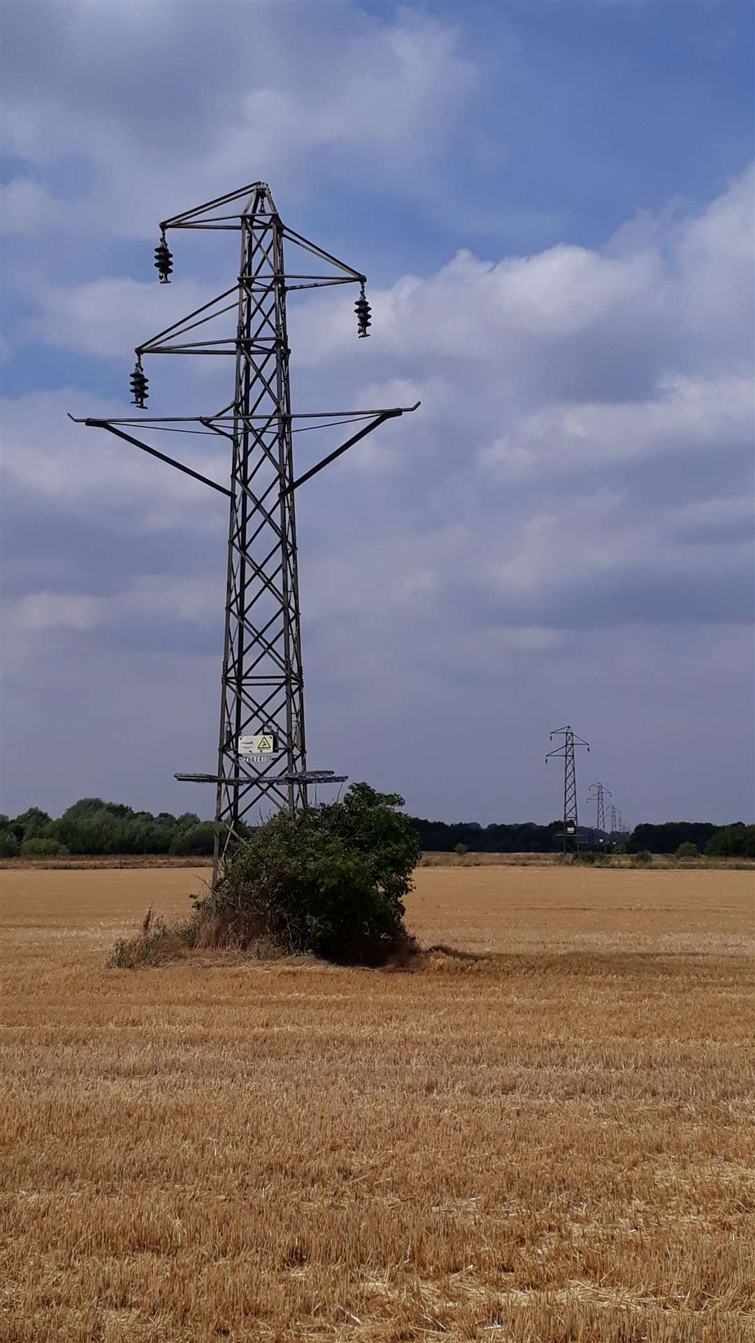 Unsightly pylons to disappear (3262694)