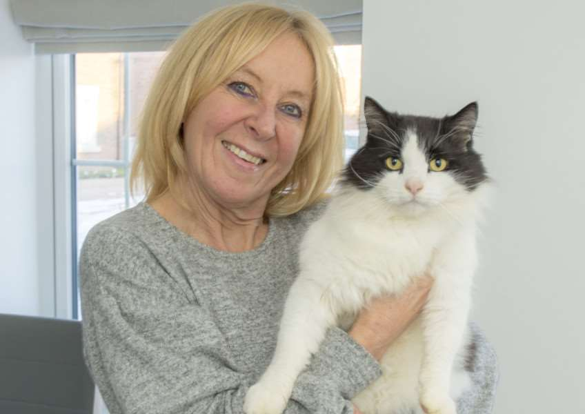 Buddy the Stamford cat who turned up at his old address five weeks after going missing. By Lee Hellwing.