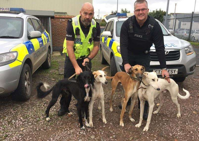 PCs James Perring and Martin Green with dogs seized from suspected hare coursers. Photo supplied by Lincolnshire Police.