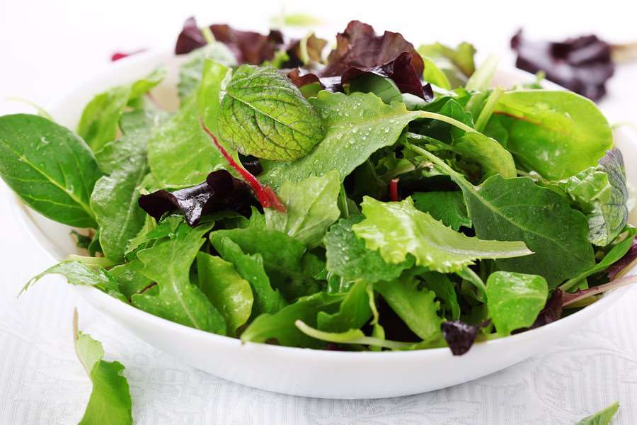 Mixed salad leaves may be to blame for the outbreak