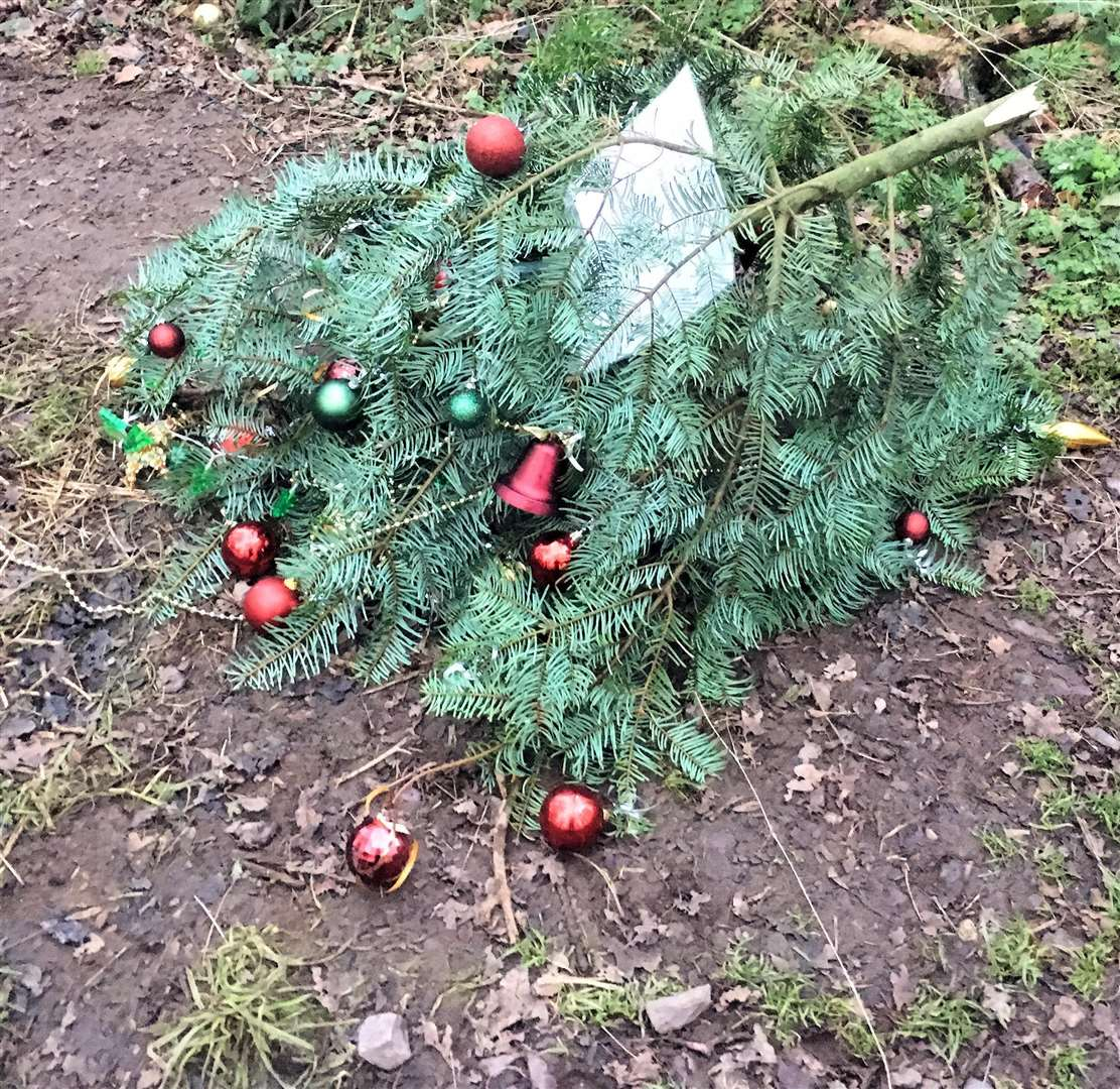 A memorial tree to popular dog walker Jim Church (inset) at Twyford Woods has been destroyed and tributes to him scattered around the area.