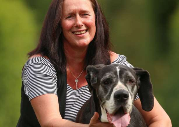 Joanne Boardman, 47, with Ellie the Great Dane. Joanne Boardman, 47 had taken her beloved rescue dog on her daily walk through some fields and allotments near her home. But within hours of returning, eight-year-old Ellie the Great Dane was covered in sore blisters and whimpering in pain.Tom Maddick / Rossparry.co.uk