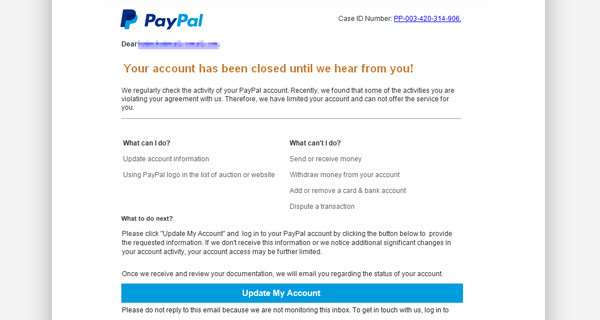 The PayPal scam email