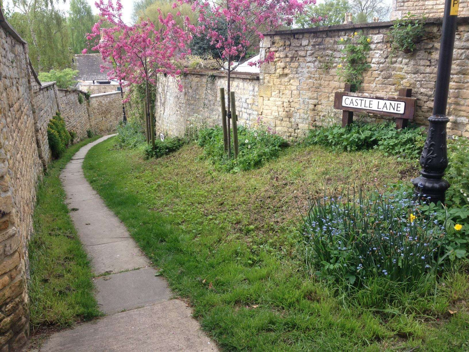 Castle Lane in Stamford where the wildflowers were cut. Photo: Andrew Stone