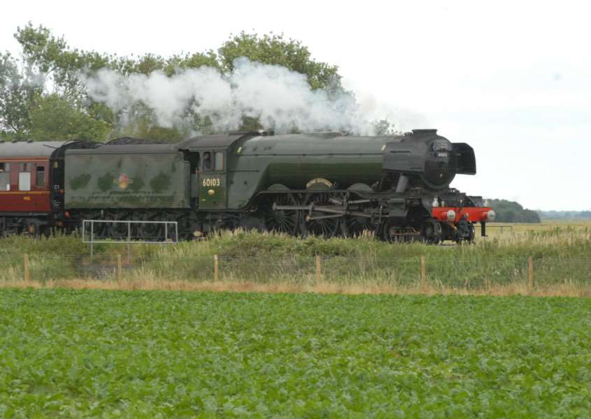 Flying Scotsman near Deeping St James level crossing