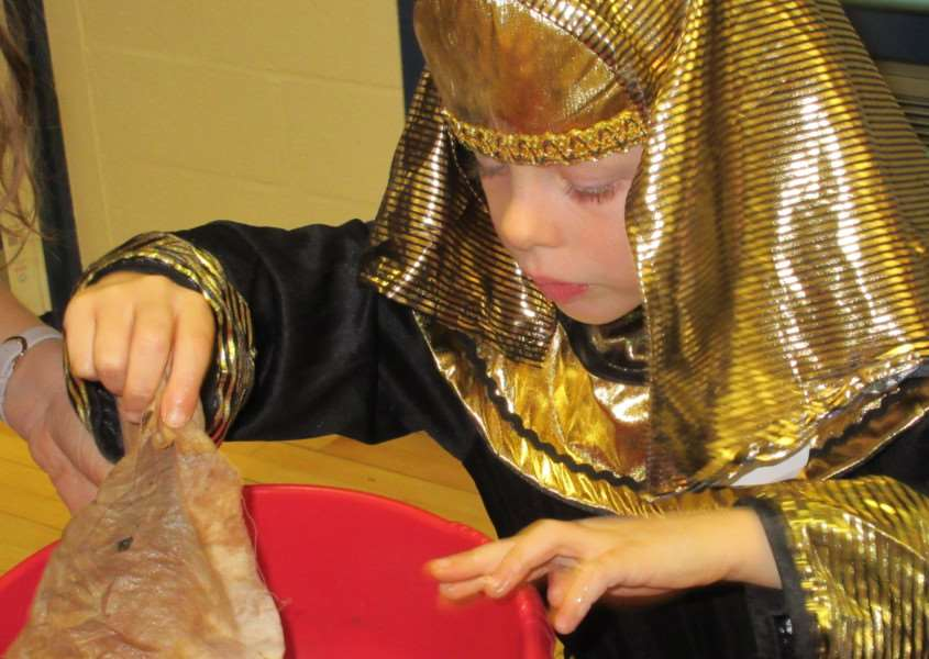 Ancient Egypt at Bourne Westfield Primary Academy