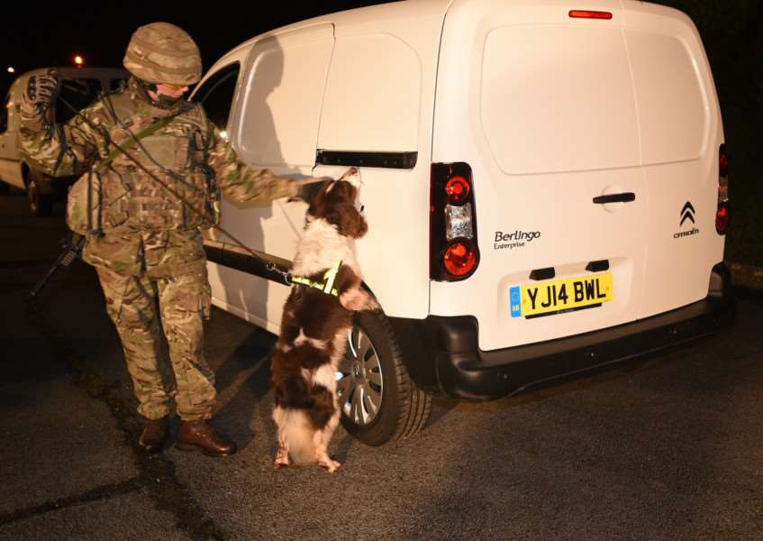 A demonstration of 1st Military Working Dog regiment at St George's Barracks in North Luffenham during a community engagement day in February