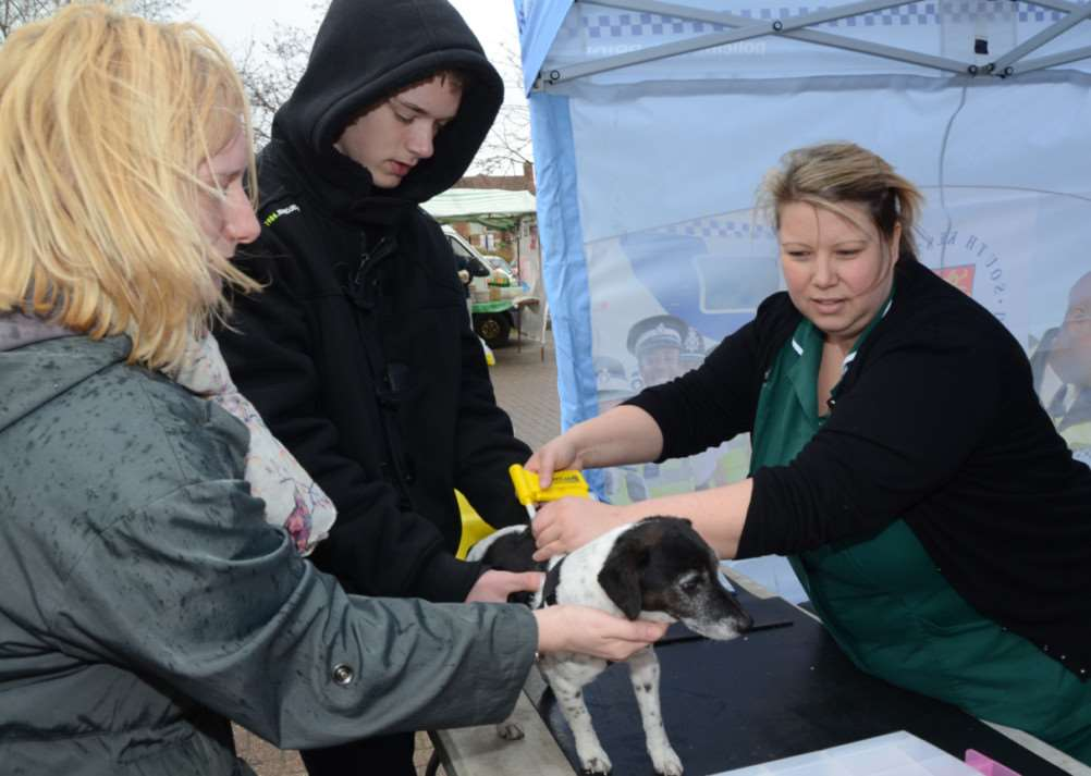 Dog chipping at Bourne. Vets nurse Sarah Cheshire with dog Tilley and owner Oliver Thorley. EMN-150329-202653009