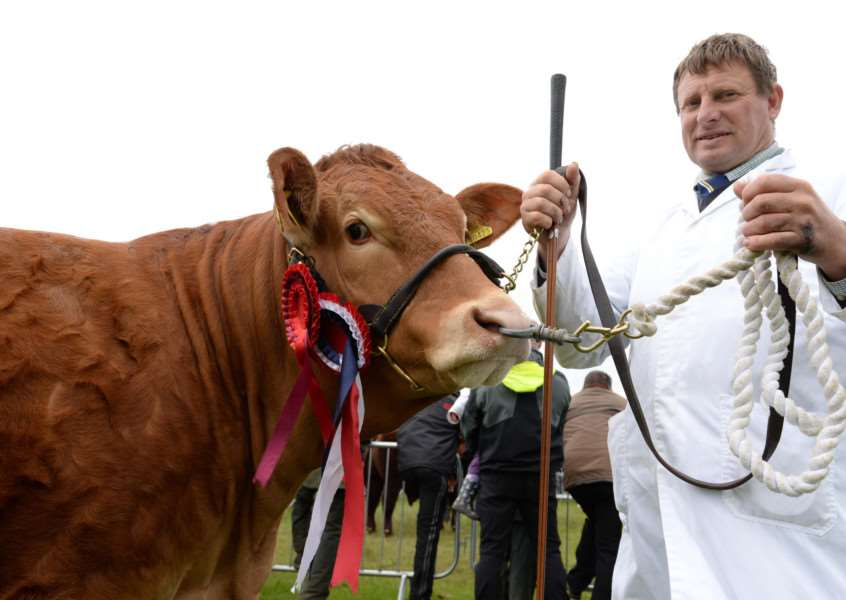 Rutland County Show 2015. The prize-winning heifer champion in any other breed with stockman Peter Bodily. Photo: Alan Walters MSMP-31-05-15-aw002 EMN-150106-122507001