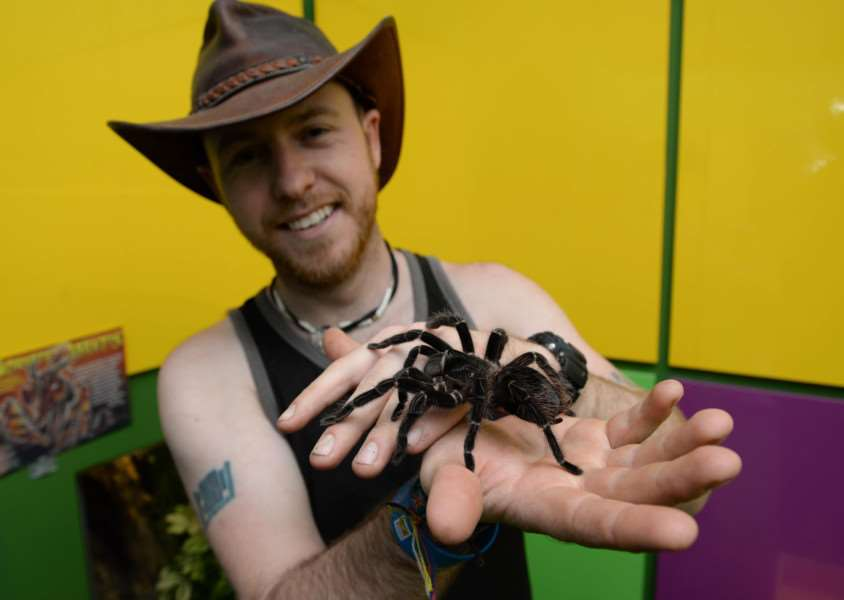 The new Bugtopia zoo at Rutland Water. Joe Mordawska with a bird-eating spider. Photo: Alan Walters MSMP-19-05-15-aw004 EMN-150519-162706001