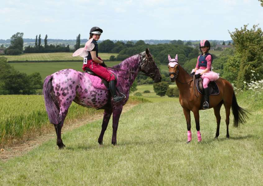 Canter for a Cure event is set to take place at Burghley House EMN-160523-130133001