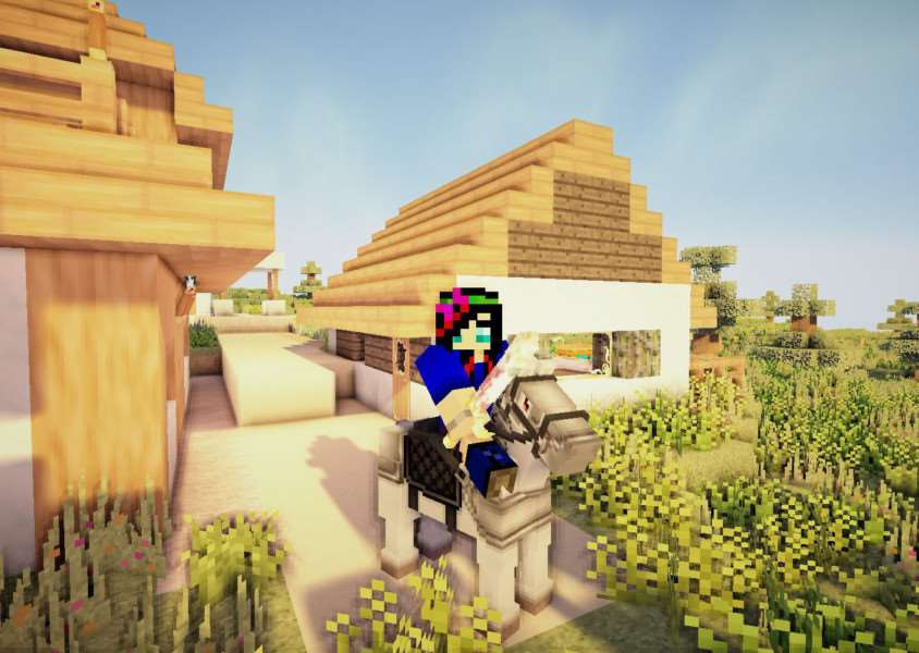 Warning over Minecraft security. PHOTO: Credit SWNS 1630234