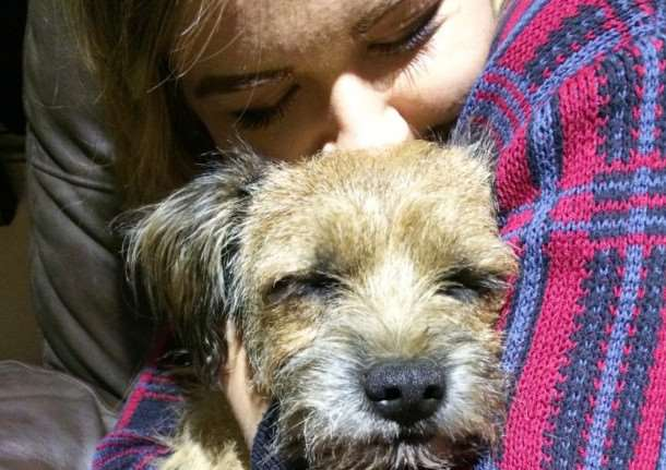 Devoted friends Heston the terrier and Jasmine Elcoate have been reunited.