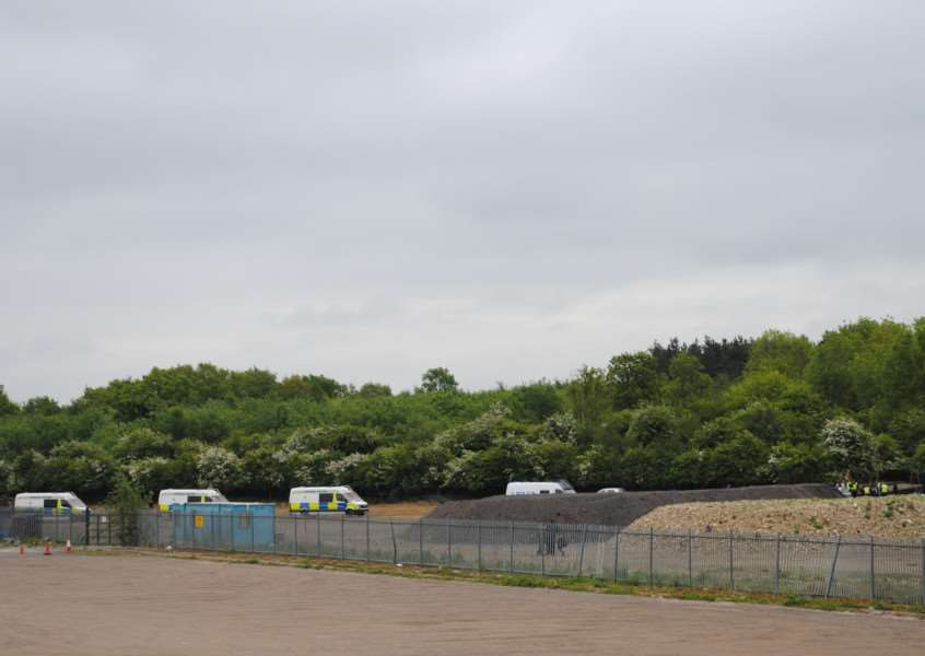 Police vans line the edge of Twyford Wood
