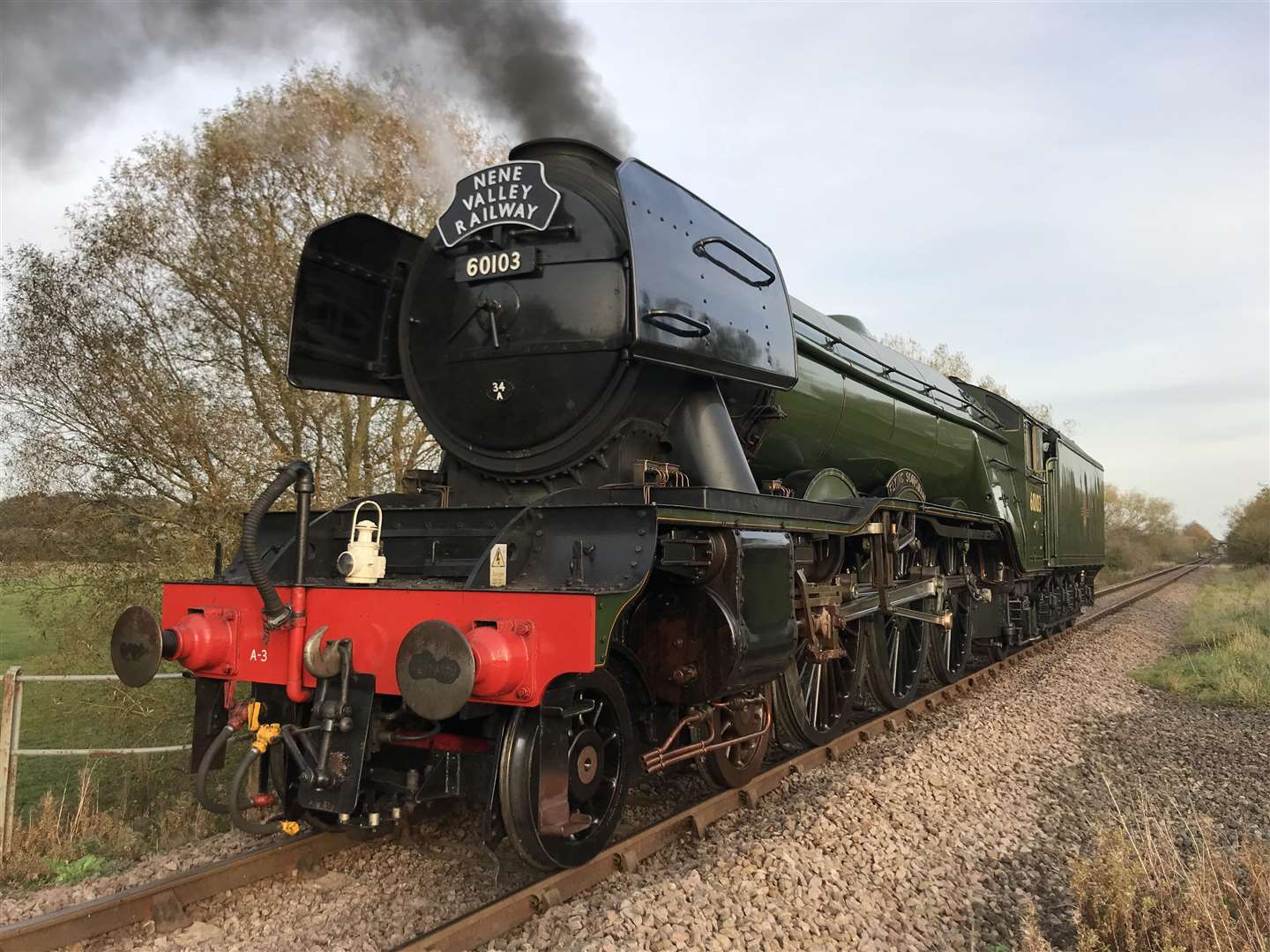 Flying Scotsman (6712616)
