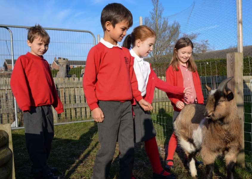 Children pictured with one of the school's goats