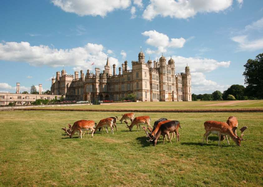 Burghley House and deer