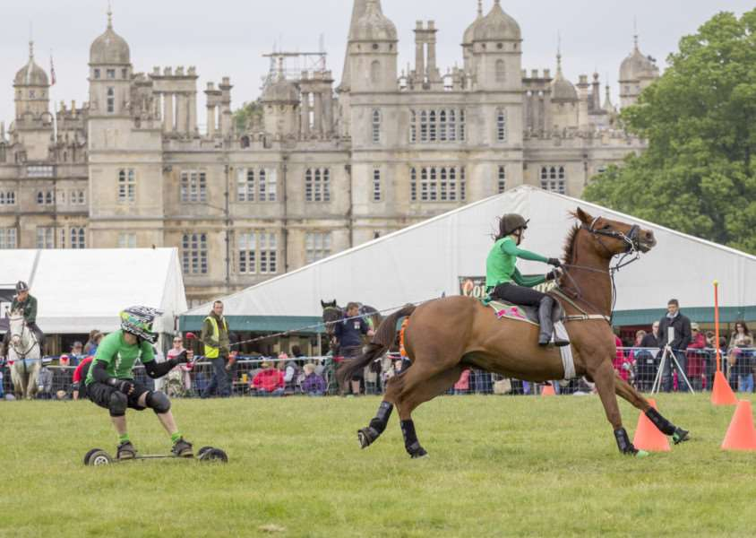 Burghley Game and Country Fair show in 2015'Photos: Lee Hellwing EMN-150527-123219001