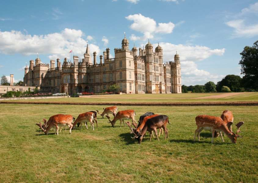 Burghley House and deer EMN-170301-152759001