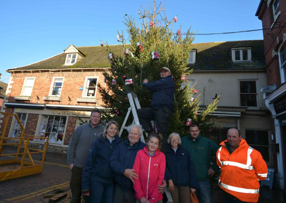 Simon Hazard, Sharon Hamilton, Brian Hamilton, Hannah Haywood, Mayor of Oakham Jayne Woodcock, Ruby Hamilton, Guy Boyd, Paul Ford and Chris Hamilton, up the ladder, with the new Christmas tree in Oakham. Photo: Adam Lowe.