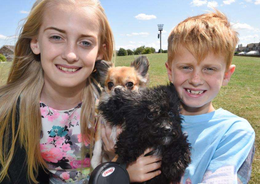 Dog show at Thackers Way Market Deeping. Phoebe and Morgan Robinson with Angel and Pixie EMN-150719-220037009