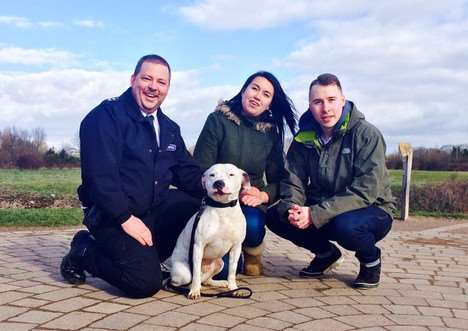 Staffordshire terrier Ziggy will be featured in the first episode of the new series of The Dog Rescuers on Channel Five tomorrow night (Tuesday) at 8pm. Photo courtesy of Channel Five. EMN-150518-093849001