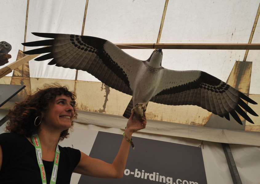 Birdfair 2014 at Rutland water. Itziar Almarcegui promoting visits to the see wildlife in Spain. EMN-140816-201556009
