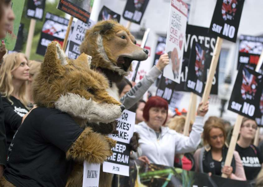 Anti-foxhunting protesters gather outside the Houses of Parliament, London. Photo: Anthony Devlin/PA Wire ENVIRONMENT_Foxhunting_120563.JP