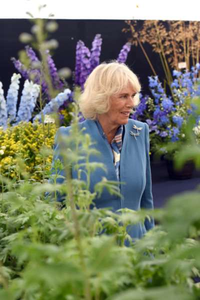 Sandringham Show with the Prince Charles and Camilla in attendance ANL-150729-162738009