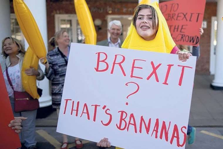 Remain supporters dressed as bananas at a protest
