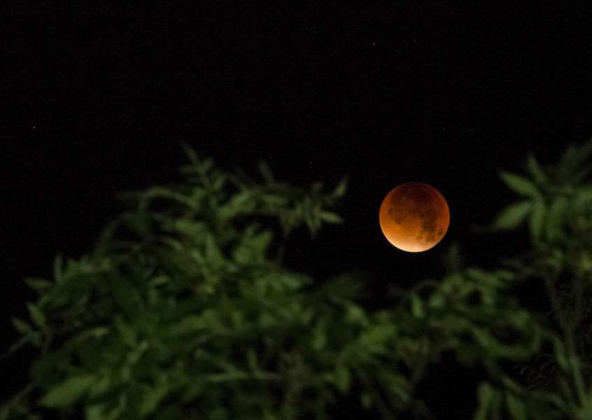 Alex Roddie took this photo of the moon over Burgh-le-Marsh near Skegness
